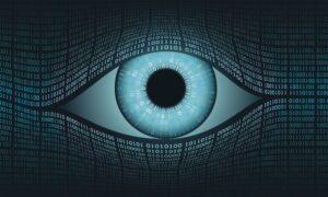 El acceso a la información es clave en el sector de la seguridad